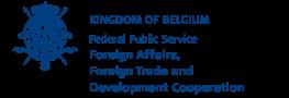 The belgian embassy
